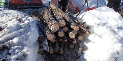 Waist High Wood Pile for Buring Overnight